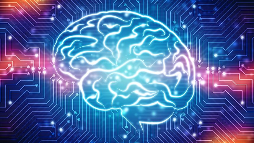Unique Human Neuron Discovered