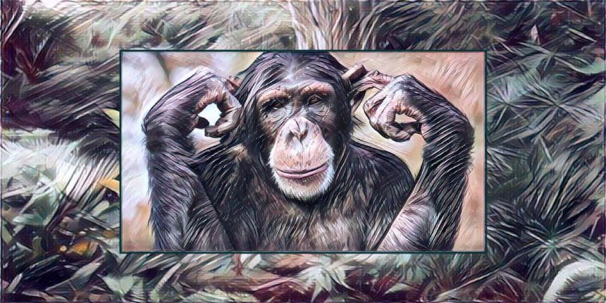 Chimpanzee Artwork