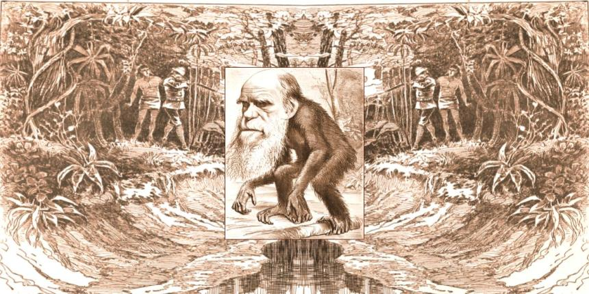 Cartoon Charles Darwin as ape in Jungle
