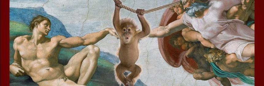 Adam Monkey God